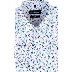 Koszula męska Giacomo Conti wielokolorowy